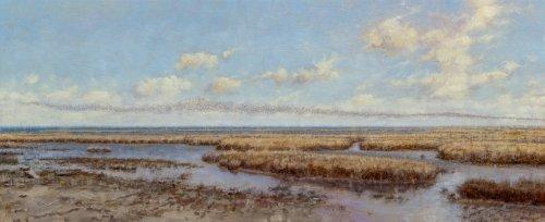 Opvliegende wadvogels (Terschellinger wad t.h.v. Midsland)